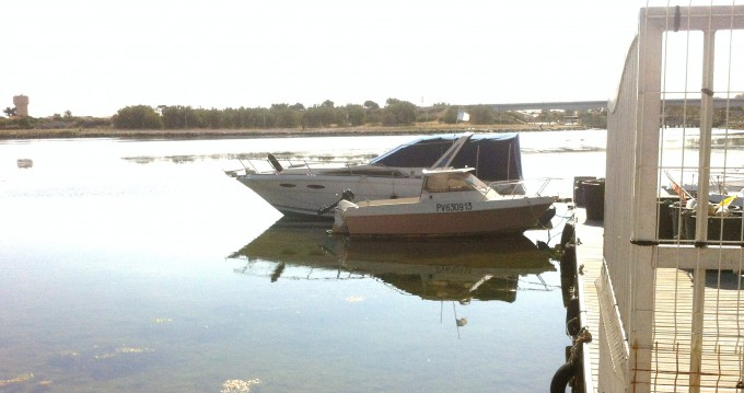 Rental yacht Le Barcarès - Sea Ray Sea Ray 300 Sundancer on SamBoat