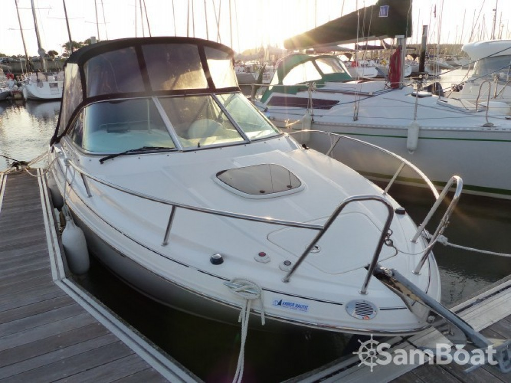 Sea Ray Sea Ray 235 Weekender between personal and professional Larmor-Plage
