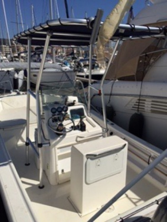 Location yacht à Ajaccio - White Shark White Shark 215 sur SamBoat