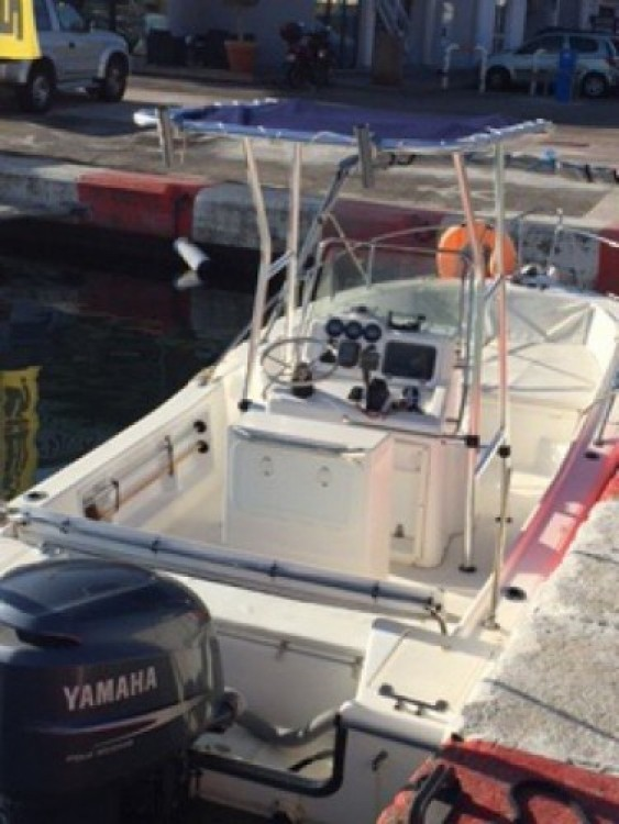 White Shark White Shark 215 te huur van particulier of professional in Ajaccio