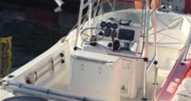 Motorboot mieten in Ajaccio - White Shark White Shark 215