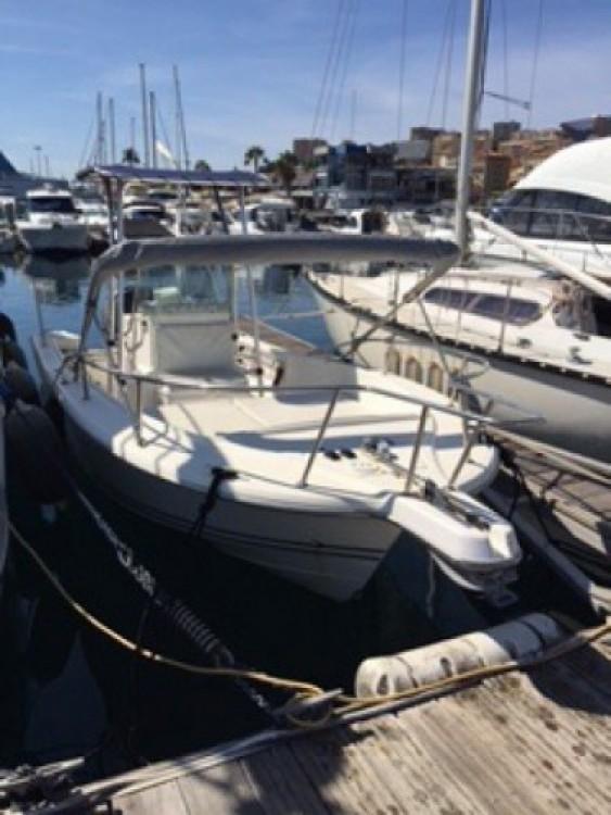 noleggio Barca a motore Ajaccio - White Shark White Shark 215