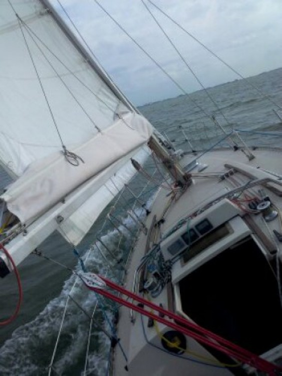 Location bateau Reimerswaal pas cher First 30