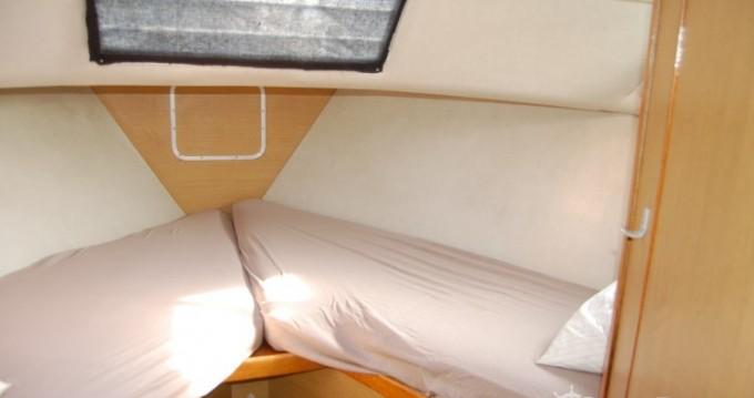 Location bateau Cuffy pas cher tasman