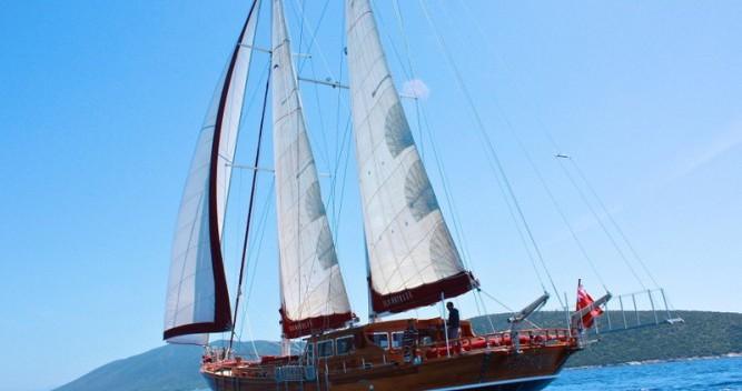 Location bateau Bavaria Gulet Il Fratello à Bodrum sur Samboat
