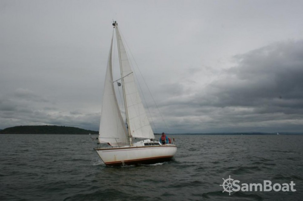Alquiler de barcos Dufour Safari enHendaya en Samboat