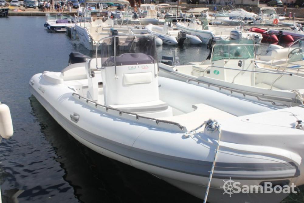 Location bateau Beluga Open 21 à Luri sur Samboat