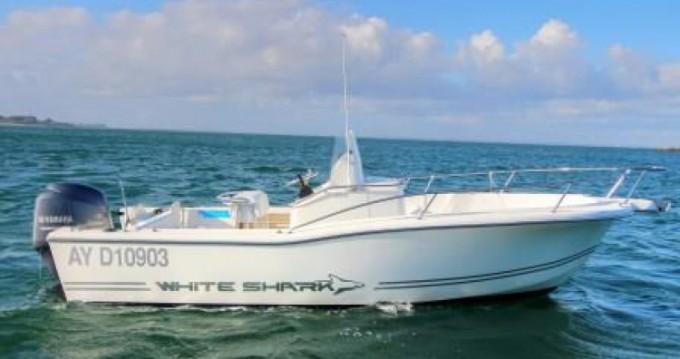 Location bateau White Shark White Shark 205 à Port-Haliguen sur Samboat