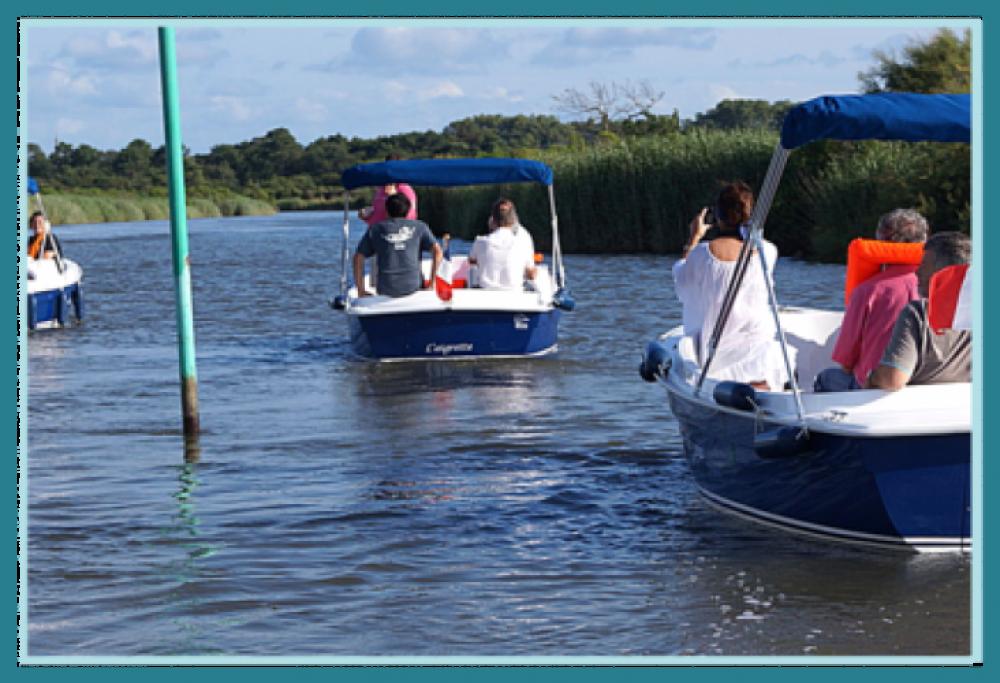 Alquiler de yate Le Teich - Ruban-Bleu Scoop en SamBoat