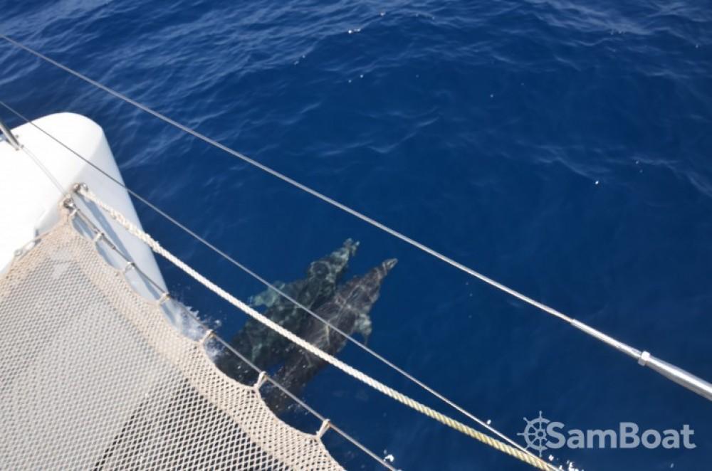 Catamarán para alquilar Port Grimaud al mejor precio