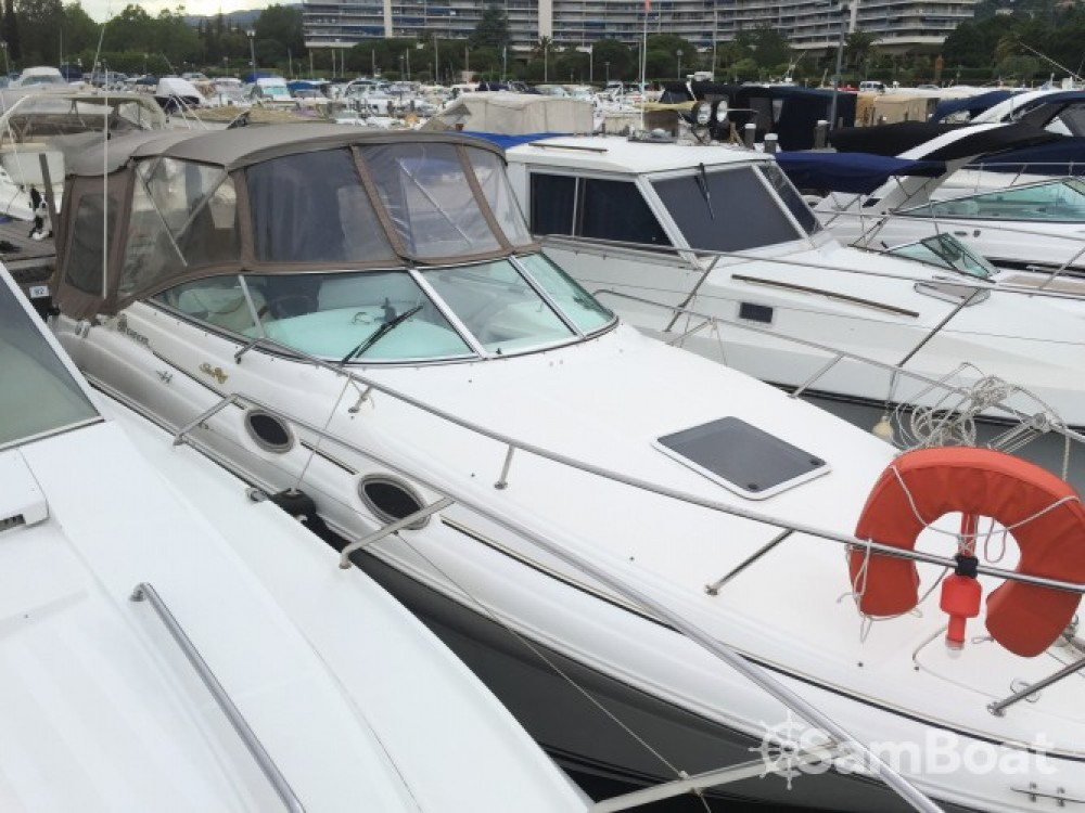 Motorboot mieten in  - Sea Ray Sea Ray 260 Sundancer