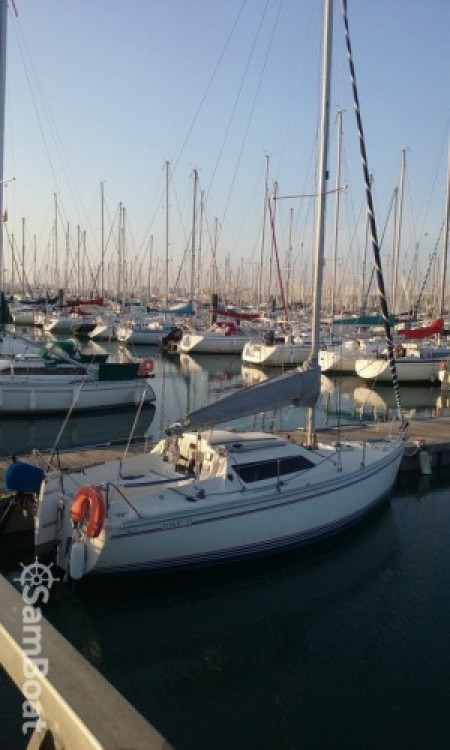 Jeanneau Tonic 23 between personal and professional La Rochelle