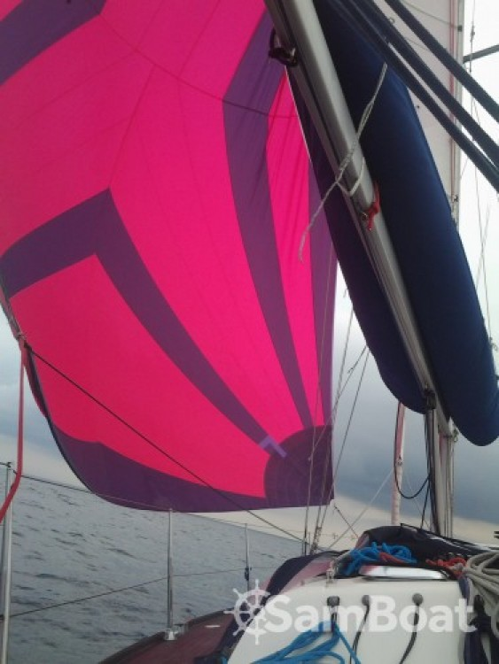 Location bateau Saint-Mandrier-sur-Mer pas cher Dufour 40 Performance