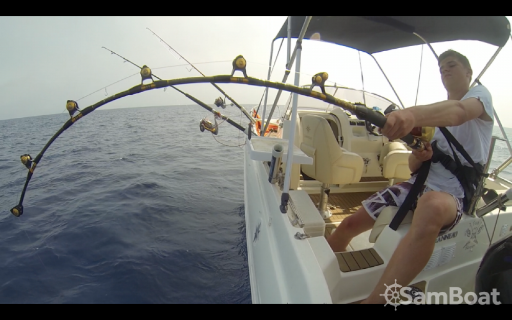 Location Bateau à moteur à Leucate - Sortie pêche  Bluefin2