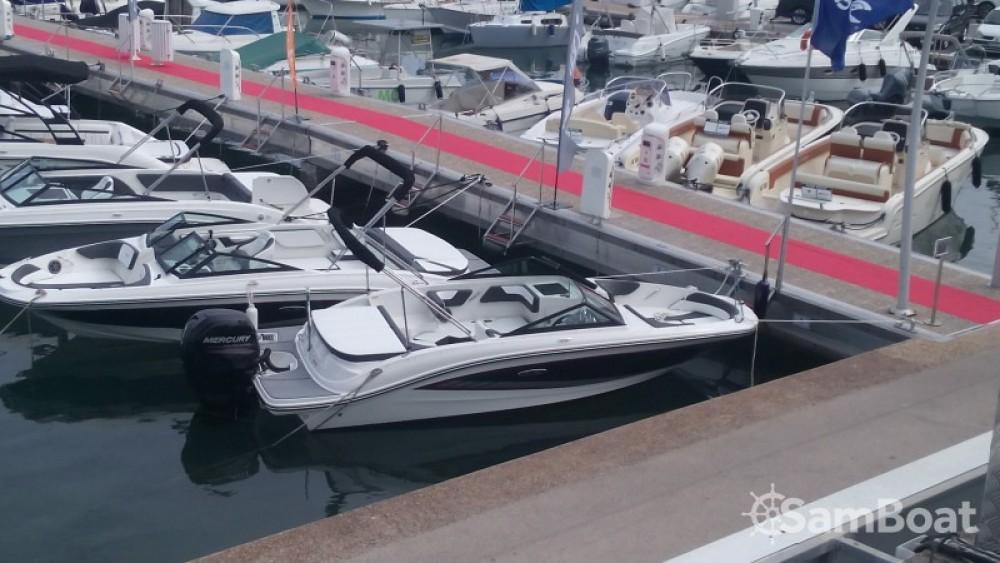Sea Ray SPX 190 OB zwischen Privatpersonen und professionellem Anbieter Mandelieu-la-Napoule