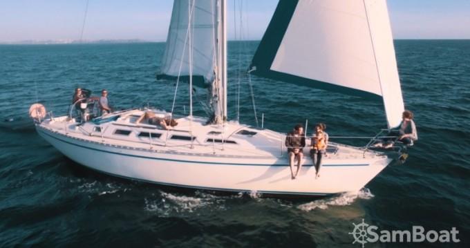 Location bateau Granville pas cher Gib Sea 442
