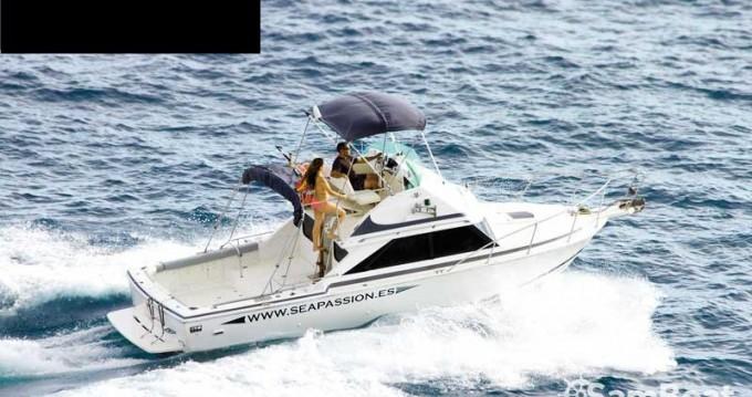 Louer Bateau à moteur avec ou sans skipper Bertram à Guía de Isora