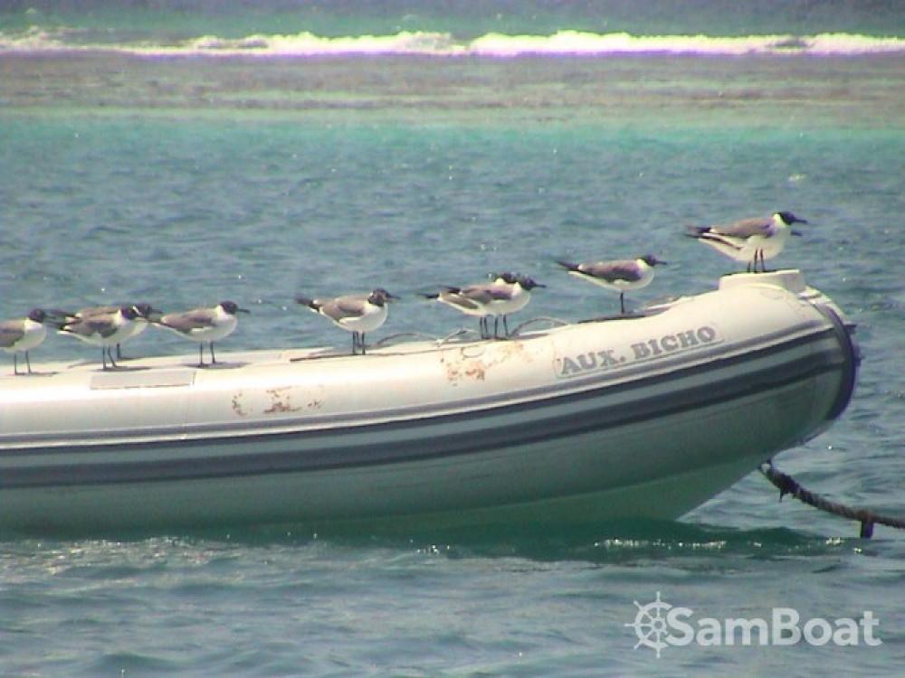 Boat rental Jeanneau Sun Magic 44 in Pointe-à-Pitre on Samboat