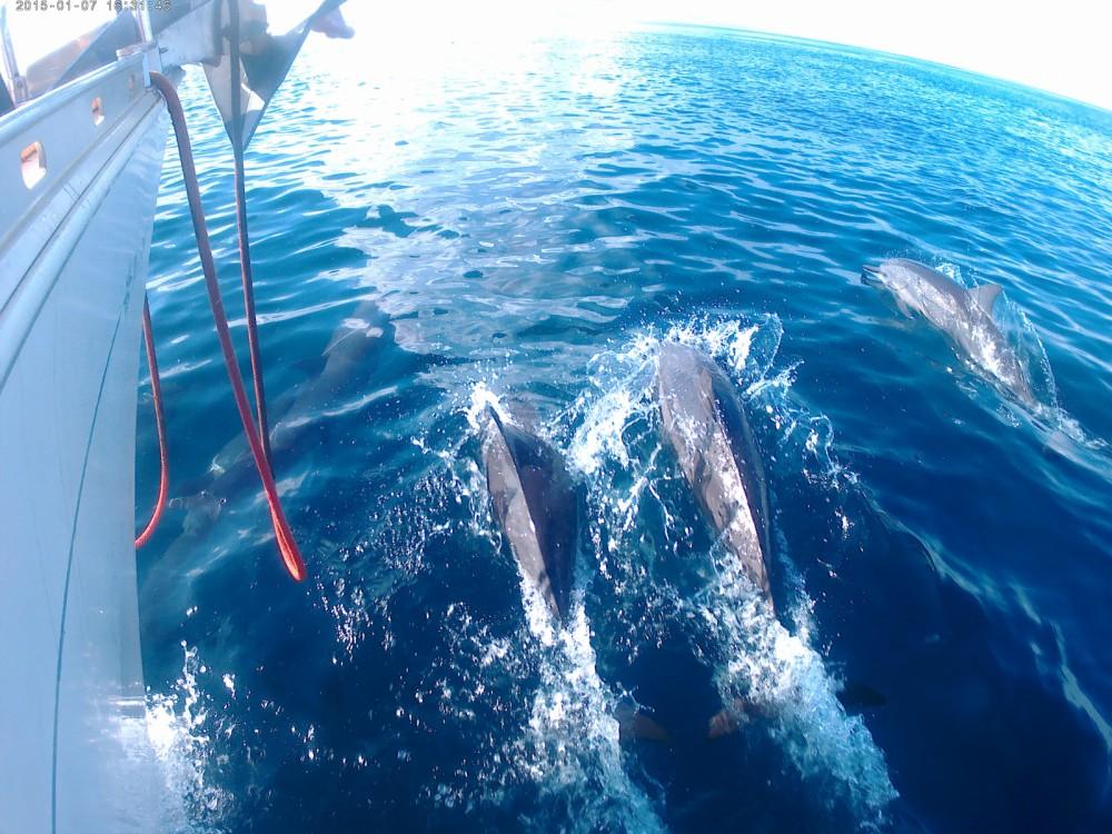 Location bateau Jeanneau Sun Odyssey 45.1 à Madagascar sur Samboat