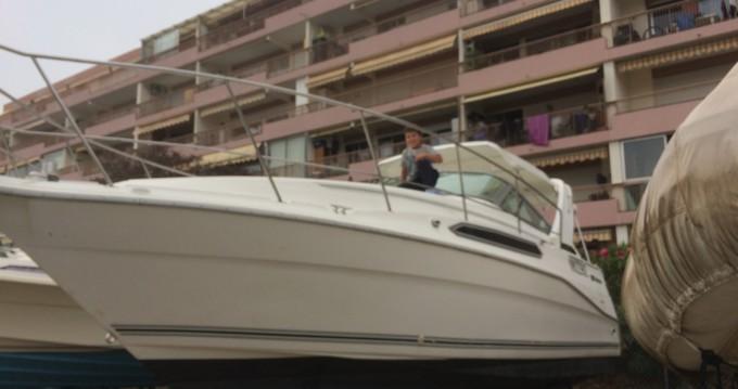 Location yacht à Mandelieu-la-Napoule - Cruiser Yachts Modem 2870 rogue  sur SamBoat