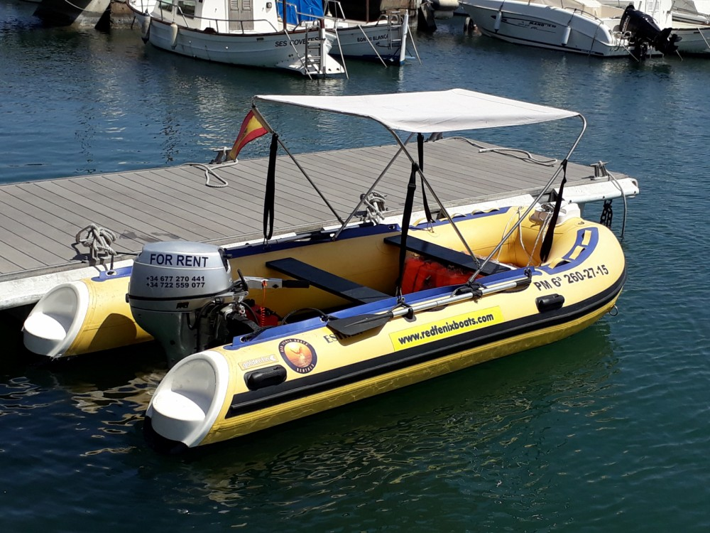Hire RIB with or without skipper Weihai Noah Yacht Co., Ltd