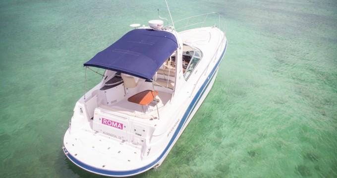 Location bateau Four Winns Four Wins Vista à Puerto Aventuras sur Samboat