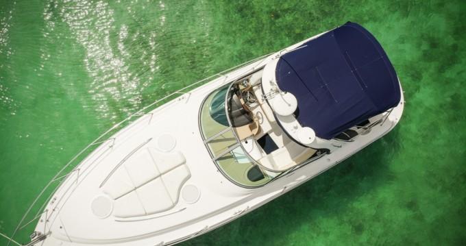 Location yacht à Puerto Aventuras - Four Winns Four Wins Vista sur SamBoat