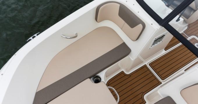 Location bateau Bayliner VR5 OB à Le Bourget-du-Lac sur Samboat