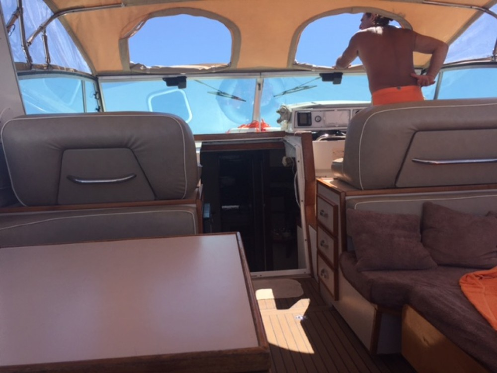 Sea Ray Sea Ray 390 entre particuliers et professionnel à Terracina