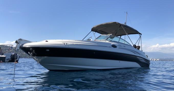 Sea Ray Sea Ray 240 Sundeck tra personale e professionale Mandelieu-la-Napoule