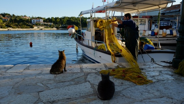 Location yacht à Corfou - Boréal Boréal 44 sur SamBoat