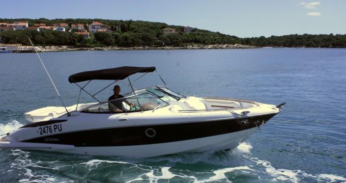 Rent a Doral 265 Elite BR ACI Marina Pula