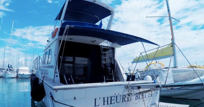 Location Bateau à moteur à Saint-Laurent-du-Var - Caterpillar Fisherman 48