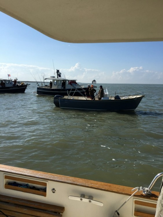 Location bateau Rhea Rhea 900 Timonier à La Rochelle sur Samboat