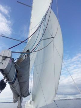 Location bateau Concarneau pas cher Pogo 30