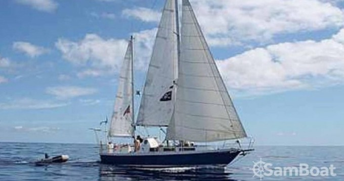 Chantier-La-Seyne-Sur-Mer barbados entre particuliers et professionnel à Pointe-à-Pitre
