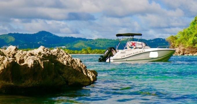 Location bateau Quicksilver Activ 555 Open à Sainte-Anne sur Samboat