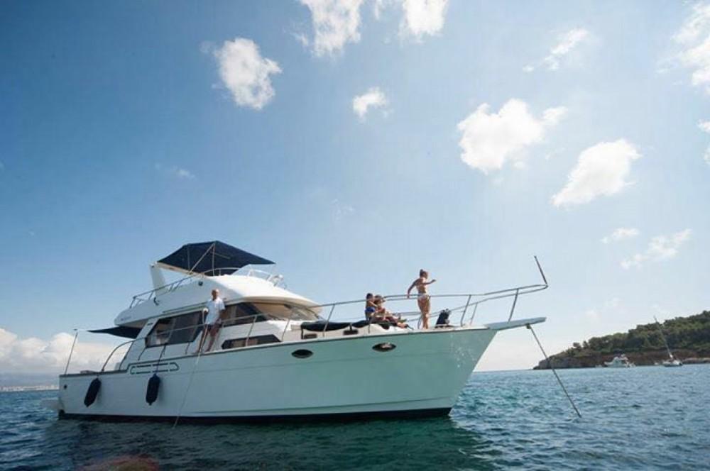 Noleggio Yacht angel marine  con un permesso di