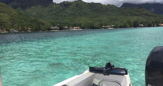 Rental Motor boat in Papeete - Bayliner Bayliner 210 DB