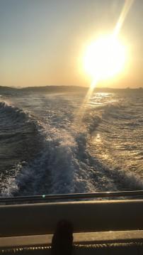 Solemar 28 offshore entre particuliers et professionnel à Piombino