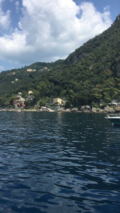 Motor boat for rent Lavagna at the best price