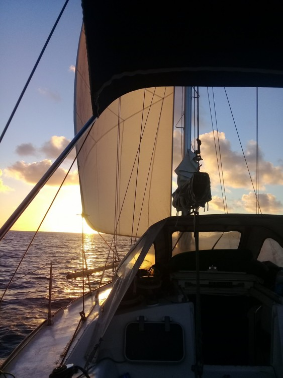 Rental yacht French Polynesia - Oxion Oxion 32 on SamBoat
