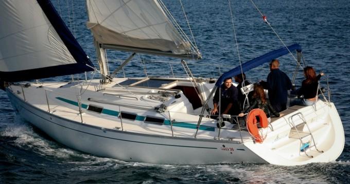 Boat rental Sas Vektor VEKTOR 36  in Sukošan on Samboat