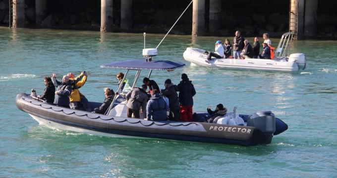 Rayglass PROTECTOR 850 entre particuliers et professionnel à La Rochelle