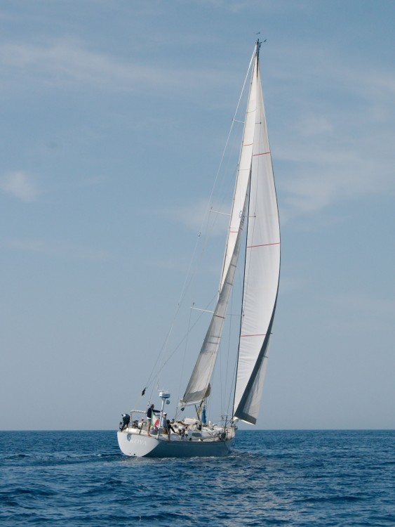 Sailboat for rent Birgu at the best price