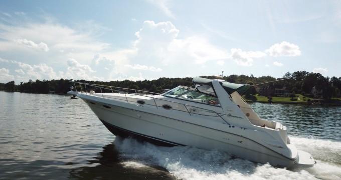 Location bateau Giovinazzo pas cher Sea Ray 330 Sundancer