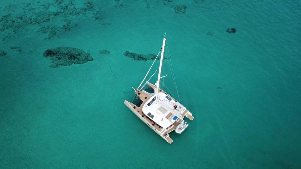 Alquiler de Catamarán, con o sin patrón Neel Le Marin