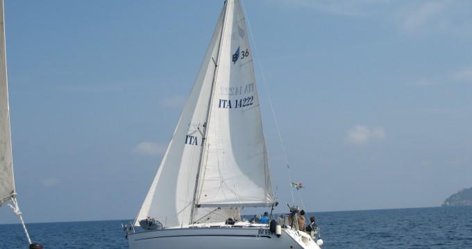 Location yacht à Nettuno - Bavaria Bavaria 36 sur SamBoat