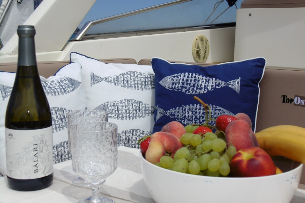 Boat rental Dual Craft Dual Craft 10.70 Open in Porto San Paolo on Samboat