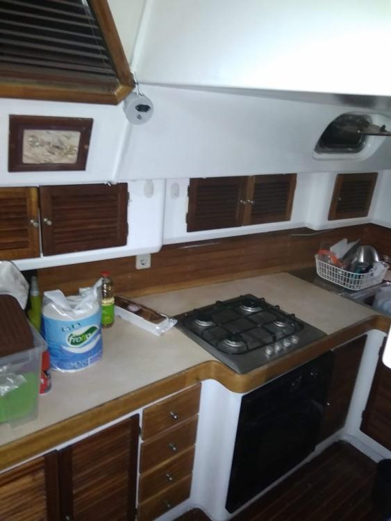 Rental Sailboat Van de Stadt with a permit
